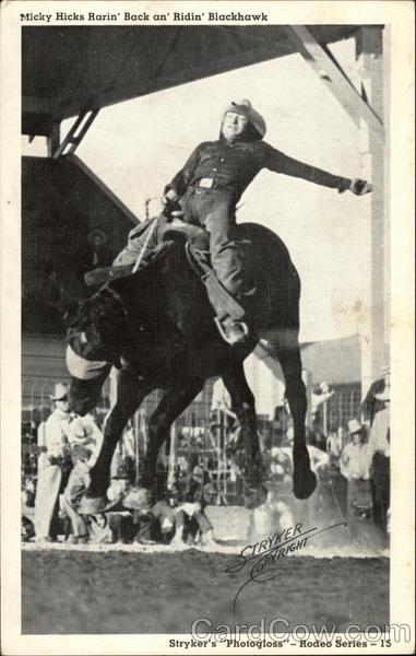 Micky Hicks Rarin' Back Horses