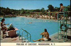 Poolside at Chesters'