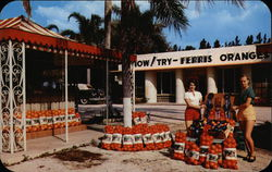 Now! Try - Ferris Oranges