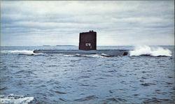 USS SKATE