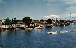 Boating & Skiing in Alameda