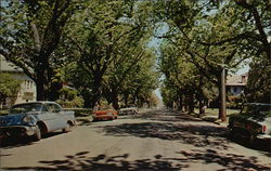 Alameda's Residential Areas