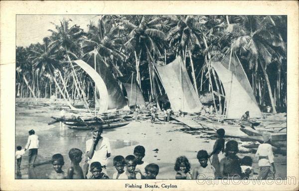 Fishing Boats Sri Lanka Southeast Asia