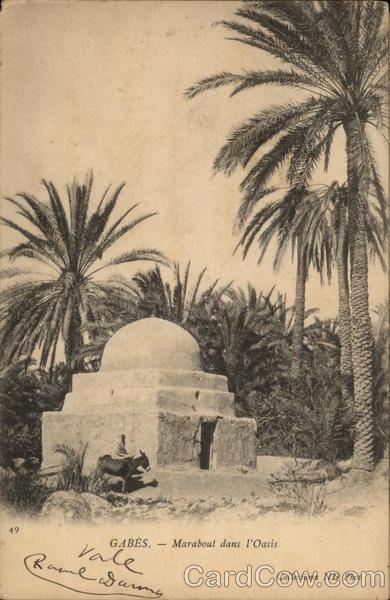 GABES - Marabout dans l'Oasis Tunisia Africa