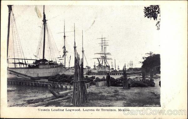Vessels Loading Logwood, Laguna de Términos Mexico