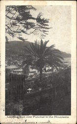 Looking East over Funchal to Mountains
