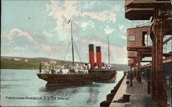 "S.S ""St. David"" in Harbour"