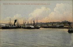 Steamers Waikare, Moeraki, Victoria, Marama and Invercargill