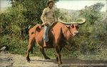 Man Riding Carabao (Water Buffalo)